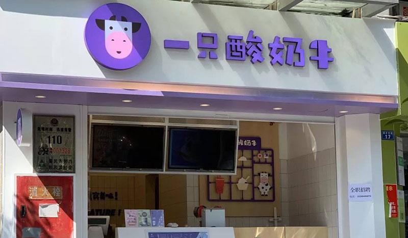 重庆一只酸奶牛加盟店