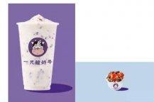 奶茶加盟一只酸奶牛奶茶品牌有钱途吗?